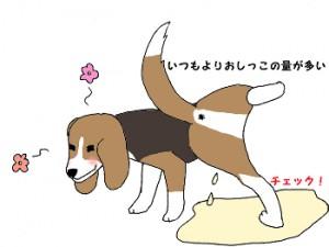 犬おしっこ