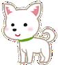 dog_chihuahua1