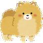 dog_pomeranian1