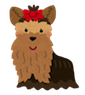 dog_yorkshire_terrier1