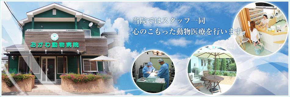 当院ではスタッフ一同心のこもった動物医療を行います。