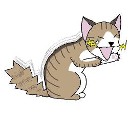 猫-口痛い