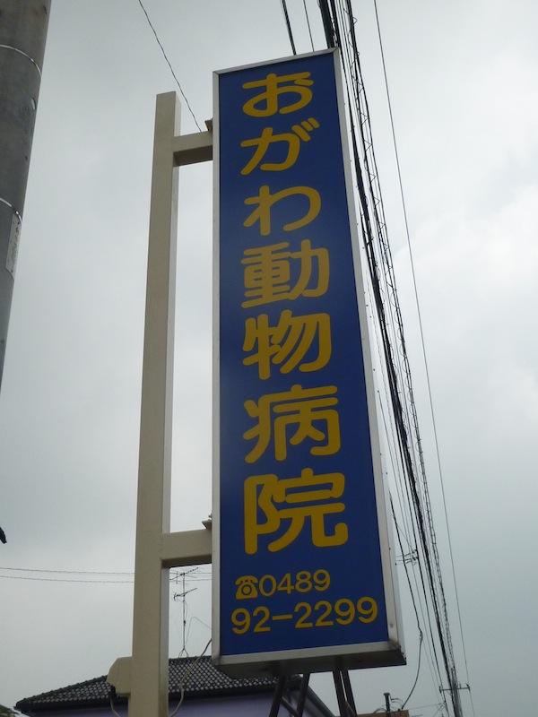 名古屋 動物病院 おがわ動物病院 | よくある質問