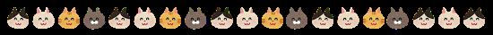 animal_cat