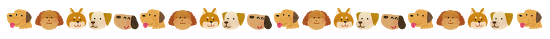 animal_dog