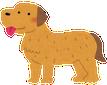 dog_golden_retriever1