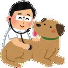 pet_kenkou_shindan1